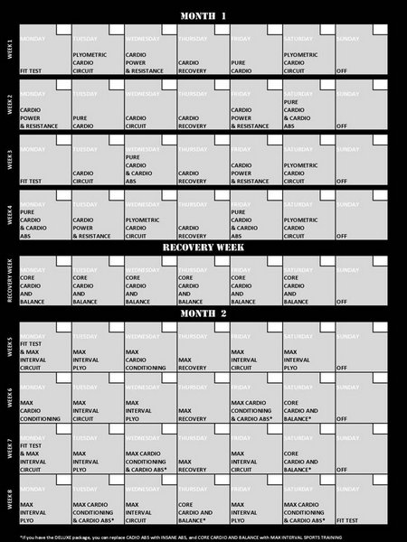Insanity Results Workout Sheet Shaun T S Schedule